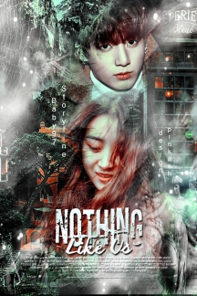 poster-nothing-like-us