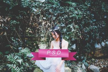 PSD 05